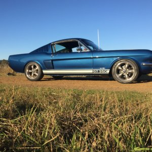 1965 Mustang Fastback GT-350 Tribute hire